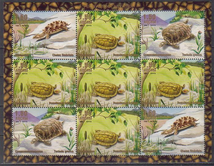 Рептилии абхазии